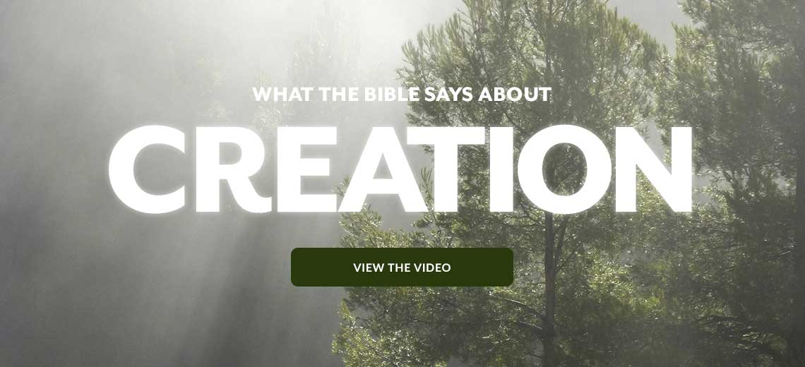 What the Bible says about Creation